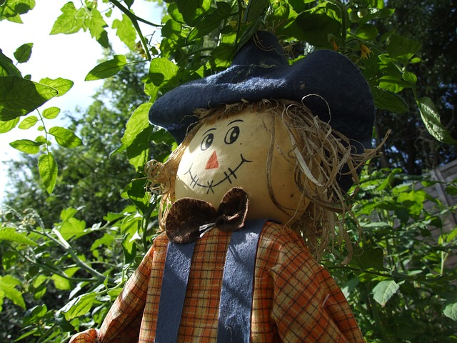 Tips for Making your Next Scarecrow